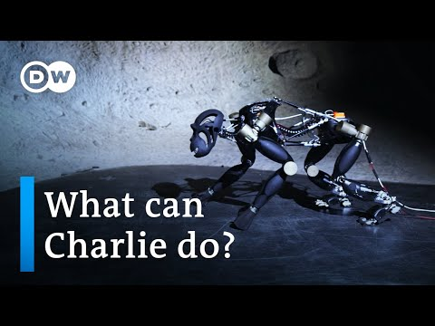 Artificial intelligence and intelligent robots | DW Documentary